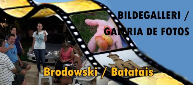 Knapp - galleri - Brodowski og Batatais